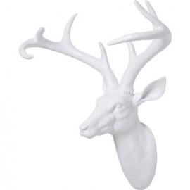 Tête de cerf blanche