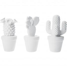 Cactus blanc design